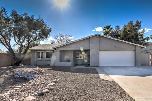 10420 S 43rd Place, Phoenix, AZ 85044 (MLS #5727966) :: The Daniel Montez Real Estate Group