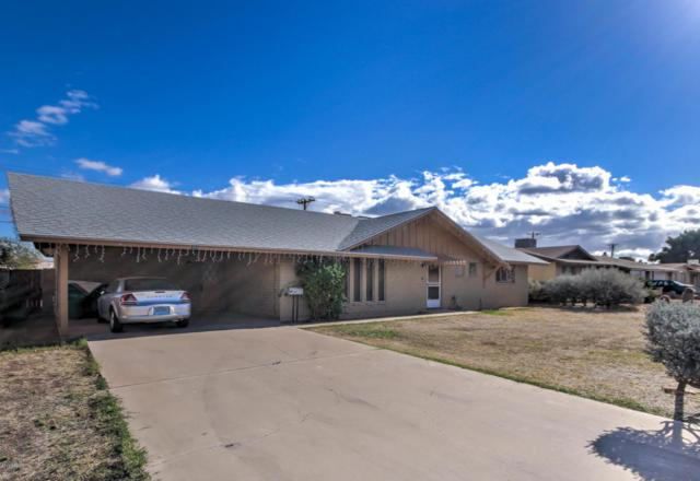 755 N Young Street, Mesa, AZ 85203 (MLS #5727971) :: Yost Realty Group at RE/MAX Casa Grande