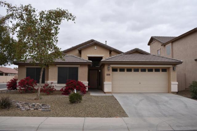 40784 W Robbins Drive, Maricopa, AZ 85138 (MLS #5727972) :: Yost Realty Group at RE/MAX Casa Grande