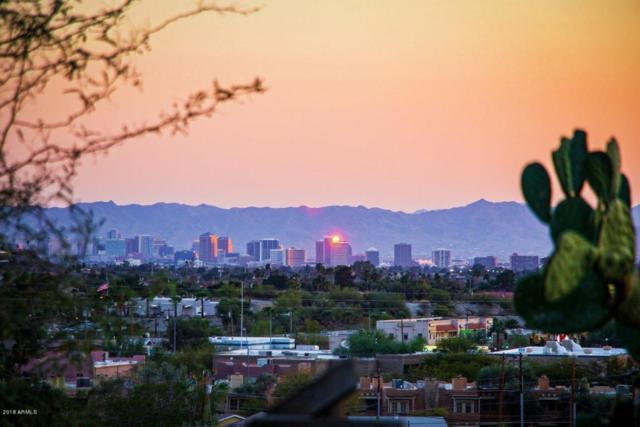 1522 E Yucca Street, Phoenix, AZ 85020 (MLS #5727985) :: RE/MAX Excalibur