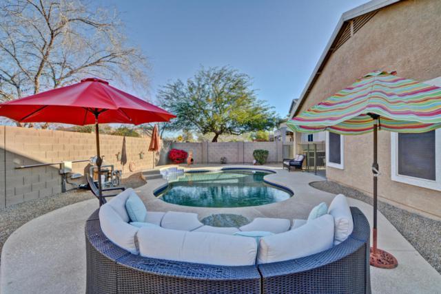 15138 W Yucatan Drive, Surprise, AZ 85379 (MLS #5727992) :: Essential Properties, Inc.