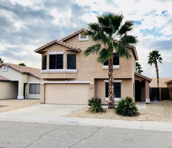 20834 N 7TH Place, Phoenix, AZ 85024 (MLS #5727994) :: The Everest Team at My Home Group