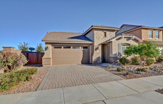 20732 E Raven Drive, Queen Creek, AZ 85142 (MLS #5727996) :: Lux Home Group at  Keller Williams Realty Phoenix