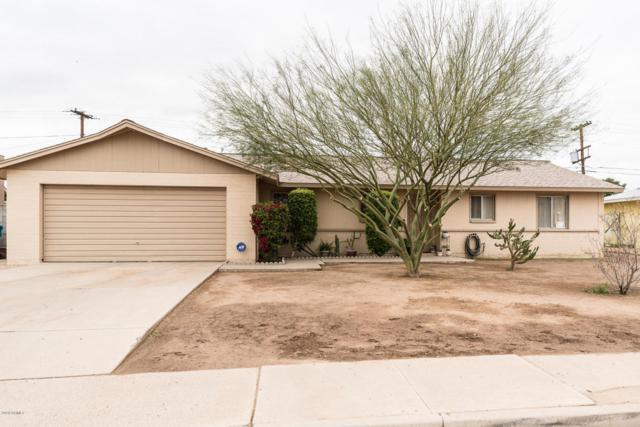 8602 N 33rd Avenue, Phoenix, AZ 85051 (MLS #5728004) :: RE/MAX Excalibur