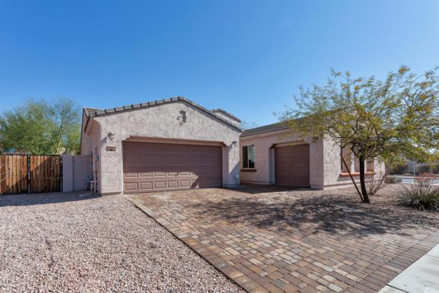 27151 N 93RD Drive, Peoria, AZ 85383 (MLS #5728005) :: Essential Properties, Inc.