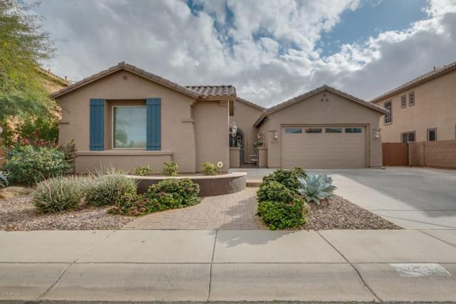 2817 E Desert Broom Place, Chandler, AZ 85286 (MLS #5728028) :: Lux Home Group at  Keller Williams Realty Phoenix