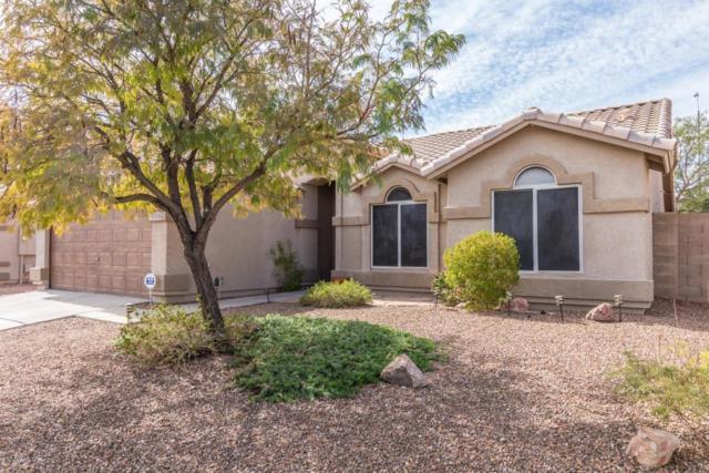 19008 N 24TH Place, Phoenix, AZ 85050 (MLS #5728032) :: Cambridge Properties