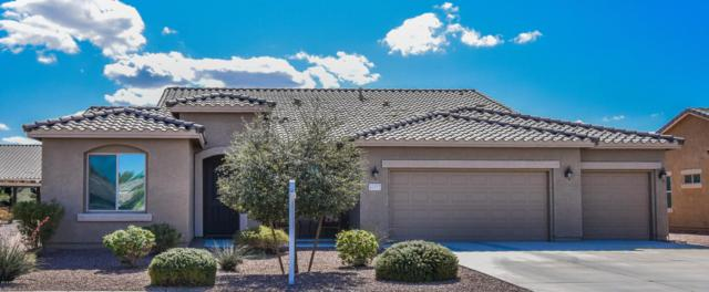 41977 W Baccarat Drive, Maricopa, AZ 85138 (MLS #5728089) :: Yost Realty Group at RE/MAX Casa Grande