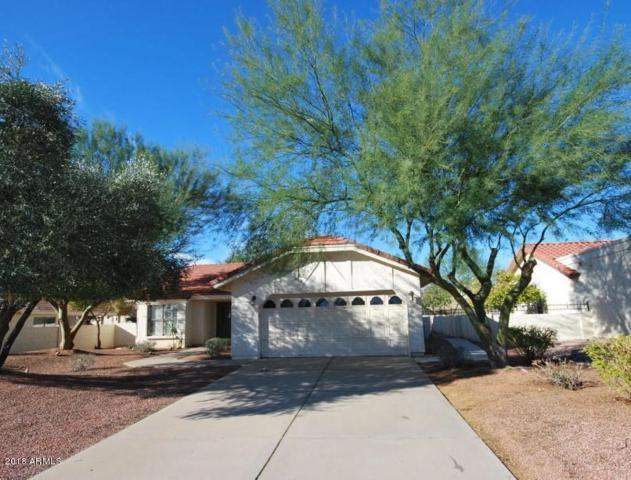 12838 S 41ST Street, Phoenix, AZ 85044 (MLS #5728094) :: The Daniel Montez Real Estate Group