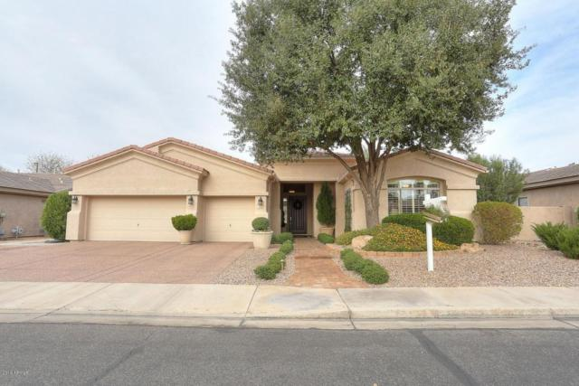 626 E Vermont Drive, Gilbert, AZ 85295 (MLS #5728135) :: Lux Home Group at  Keller Williams Realty Phoenix
