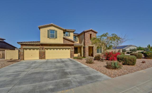 18424 W Desert Lane, Surprise, AZ 85388 (MLS #5728141) :: EXIT Realty Living - Scottsdale