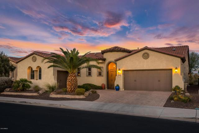 27781 N 130TH Drive N, Peoria, AZ 85383 (MLS #5728166) :: Yost Realty Group at RE/MAX Casa Grande