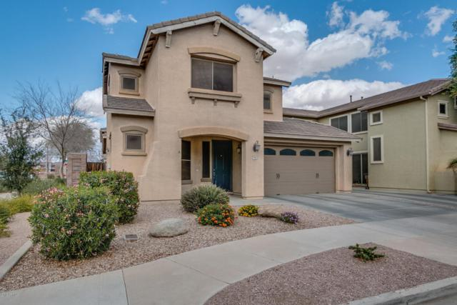 18862 E Seagull Drive, Queen Creek, AZ 85142 (MLS #5728177) :: Lux Home Group at  Keller Williams Realty Phoenix