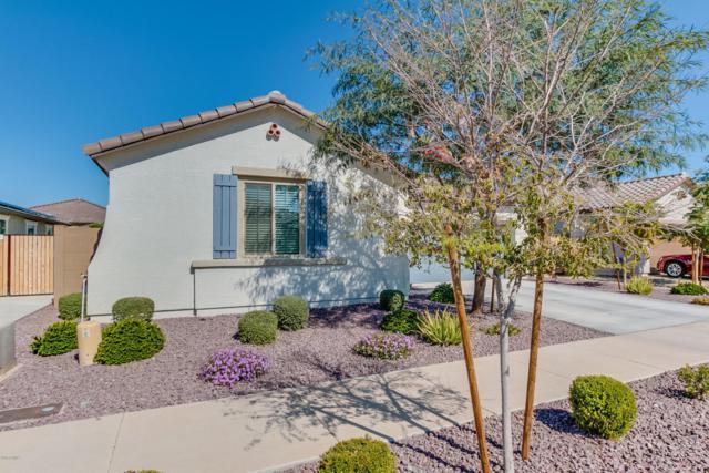 15742 W Laurel Lane, Surprise, AZ 85379 (MLS #5728227) :: EXIT Realty Living - Scottsdale
