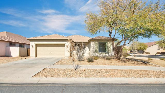 13534 W Port Royale Lane, Surprise, AZ 85379 (MLS #5728249) :: EXIT Realty Living - Scottsdale
