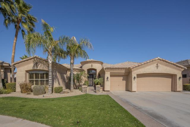 1770 W Glacier Way, Chandler, AZ 85248 (MLS #5728269) :: Lux Home Group at  Keller Williams Realty Phoenix