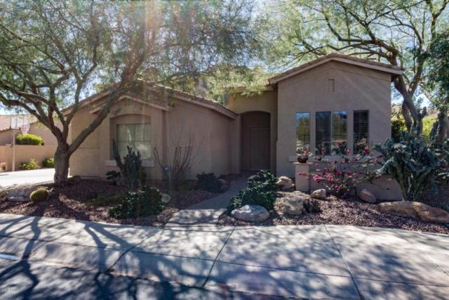 5921 W Fetlock Trail, Phoenix, AZ 85083 (MLS #5728281) :: EXIT Realty Living - Scottsdale