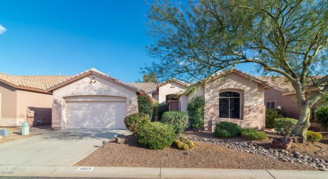 5523 S Red Yucca Lane, Gold Canyon, AZ 85118 (MLS #5728304) :: Lux Home Group at  Keller Williams Realty Phoenix