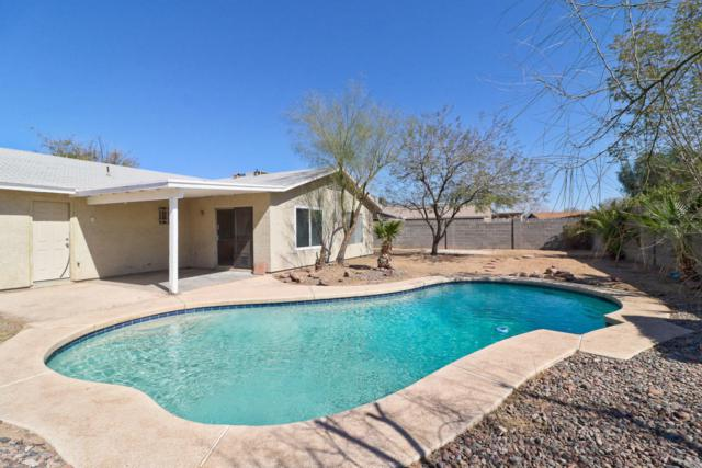 915 W Yale Drive, Tempe, AZ 85283 (MLS #5728337) :: Lux Home Group at  Keller Williams Realty Phoenix