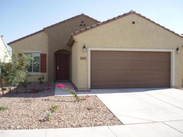 5430 W Montebello Way, Florence, AZ 85132 (MLS #5728413) :: Yost Realty Group at RE/MAX Casa Grande