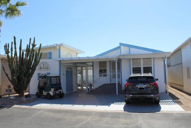 17200 W Bell Road #1217, Surprise, AZ 85374 (MLS #5728446) :: The Jesse Herfel Real Estate Group