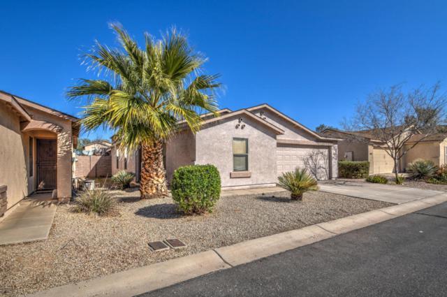 2366 E Meadow Land Drive, San Tan Valley, AZ 85140 (MLS #5728459) :: Yost Realty Group at RE/MAX Casa Grande