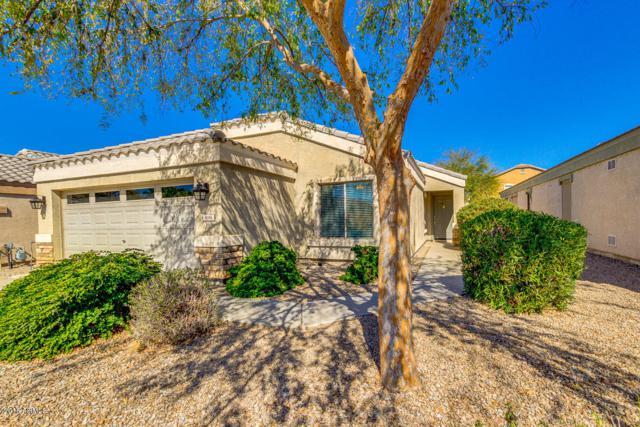 496 E Payton Street, San Tan Valley, AZ 85140 (MLS #5728492) :: Yost Realty Group at RE/MAX Casa Grande