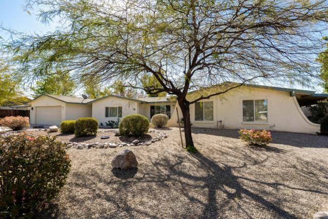 4023 E Yucca Street, Phoenix, AZ 85028 (MLS #5728778) :: Occasio Realty