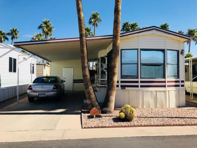439 S Seneca Drive, Apache Junction, AZ 85119 (MLS #5728808) :: Yost Realty Group at RE/MAX Casa Grande