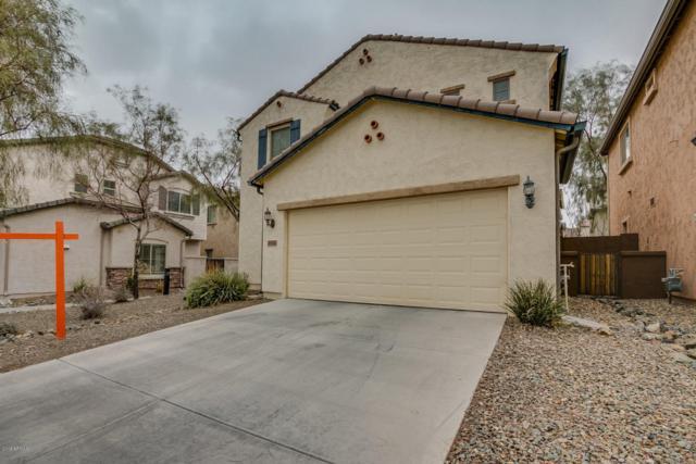 29433 N 22nd Avenue, Phoenix, AZ 85085 (MLS #5728816) :: Occasio Realty
