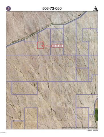 41300 W Mountain View Road, Tonopah, AZ 85354 (MLS #5728862) :: The Kenny Klaus Team