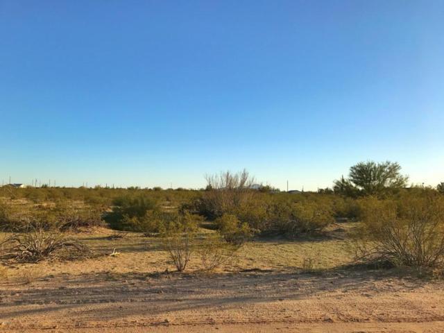 0 Dusty Larke Trail, Florence, AZ 85132 (MLS #5728871) :: Lifestyle Partners Team