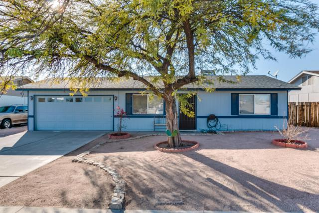 19062 N 2ND Avenue, Phoenix, AZ 85027 (MLS #5729010) :: Occasio Realty