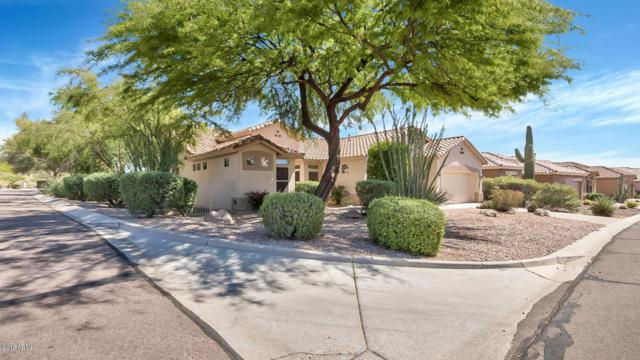 5235 S Red Yucca Lane, Gold Canyon, AZ 85118 (MLS #5729126) :: Kortright Group - West USA Realty