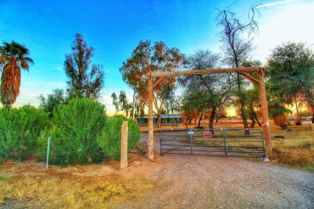 50039 W Mockingbird Lane, Maricopa, AZ 85139 (MLS #5729304) :: Revelation Real Estate