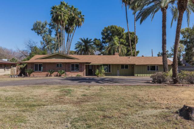 7209 N 15th Avenue, Phoenix, AZ 85021 (MLS #5729432) :: Santizo Realty Group