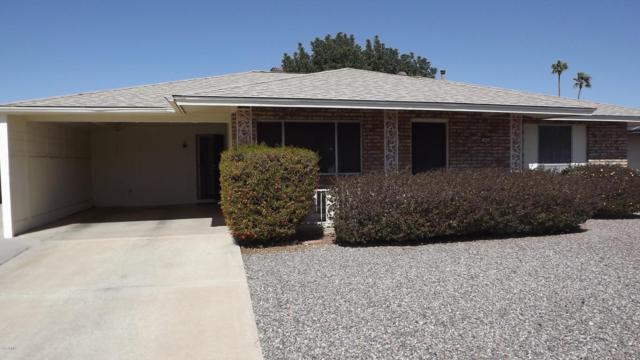 9911 W Desert Forest Circle, Sun City, AZ 85351 (MLS #5729467) :: Private Client Team