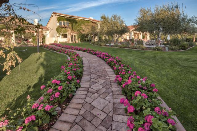 5115 N Wilkinson Road, Paradise Valley, AZ 85253 (MLS #5729497) :: Occasio Realty