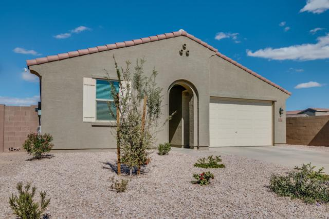 1154 W Carlsbad Drive, San Tan Valley, AZ 85140 (MLS #5729500) :: Occasio Realty