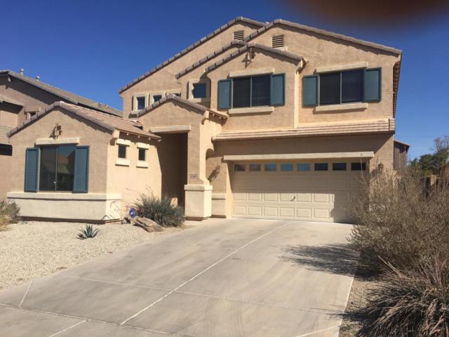 22397 N Vanderveen Way, Maricopa, AZ 85138 (MLS #5729597) :: Occasio Realty