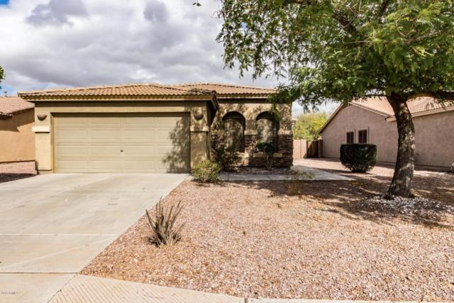 15956 W Crocus Drive, Surprise, AZ 85379 (MLS #5729628) :: The AZ Performance Realty Team