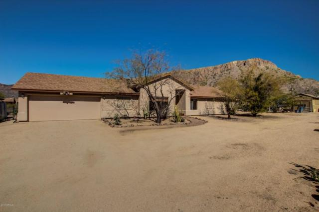 42147 N 7TH Street, Phoenix, AZ 85086 (MLS #5729957) :: Occasio Realty