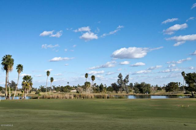 20035 N Crown Ridge Drive, Sun City West, AZ 85375 (MLS #5729988) :: Private Client Team