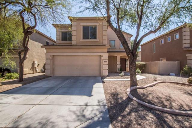 44397 W Knauss Drive, Maricopa, AZ 85138 (MLS #5730019) :: Occasio Realty