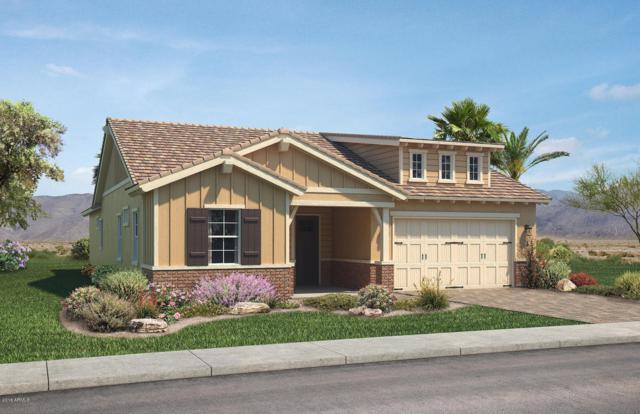 1508 W State Avenue, Phoenix, AZ 85021 (MLS #5730157) :: My Home Group