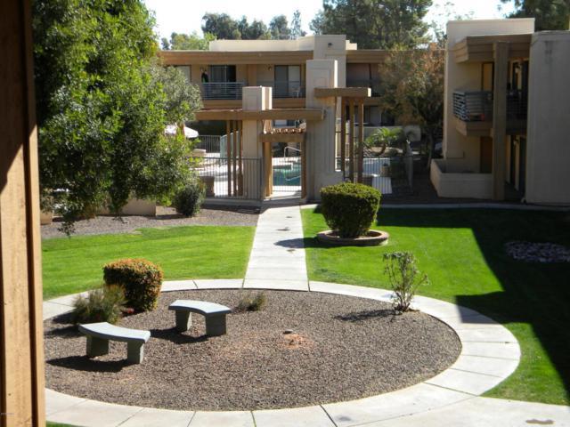 3420 W Danbury Drive C 204, Phoenix, AZ 85053 (MLS #5730178) :: Brett Tanner Home Selling Team