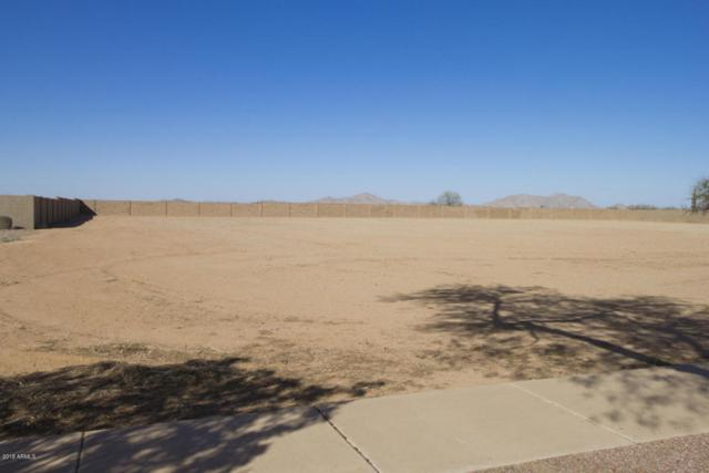 206 E Cornerstone Circle, Casa Grande, AZ 85122 (MLS #5730195) :: My Home Group