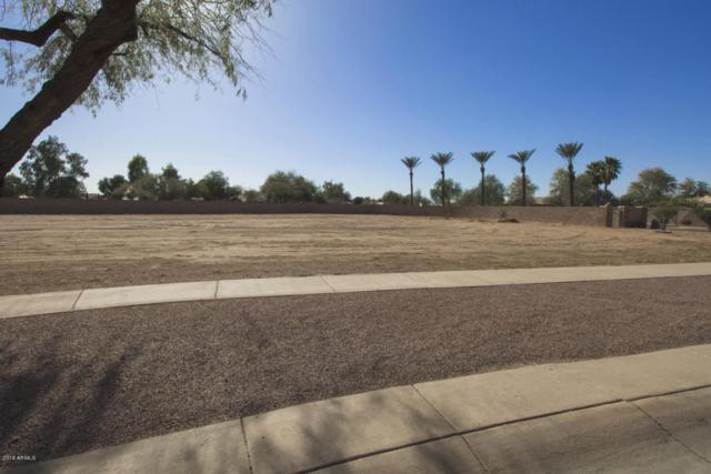 382 E Cornerstone Circle, Casa Grande, AZ 85122 (MLS #5730211) :: Yost Realty Group at RE/MAX Casa Grande