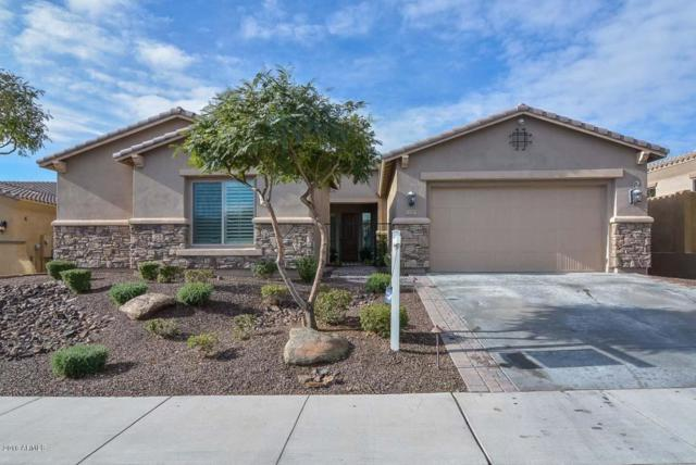 13343 W Oyer Lane, Peoria, AZ 85383 (MLS #5730243) :: REMAX Professionals