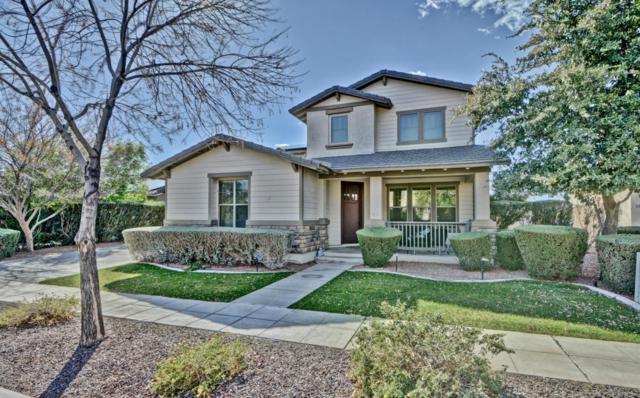 13152 N 154TH Lane, Surprise, AZ 85379 (MLS #5730289) :: Occasio Realty
